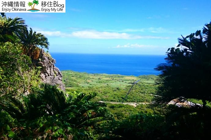 大石林山の魅力である琉球石灰岩の山