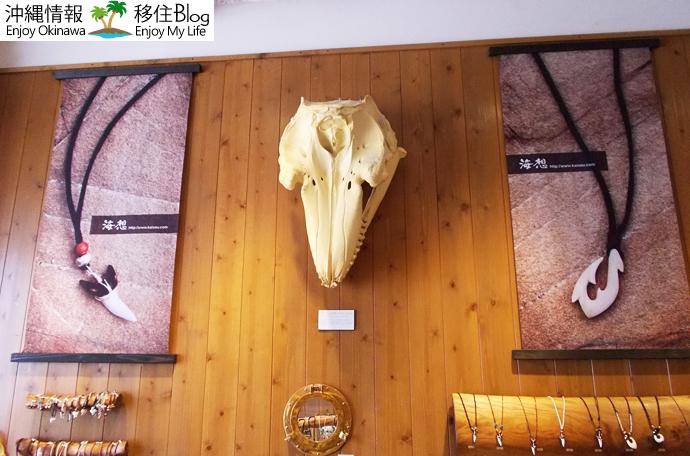 クジラの頭骨のレプリカ