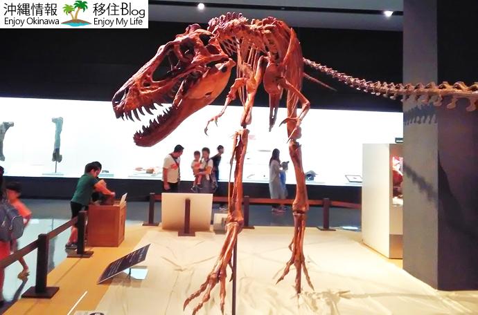 ティラノサウルスの亜成体「ジェーン」
